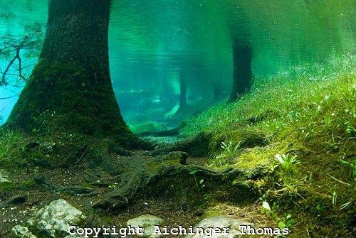 Зеленое озеро Австрия