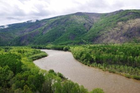 Река Коппи